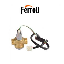 flusostato caldera ferroli